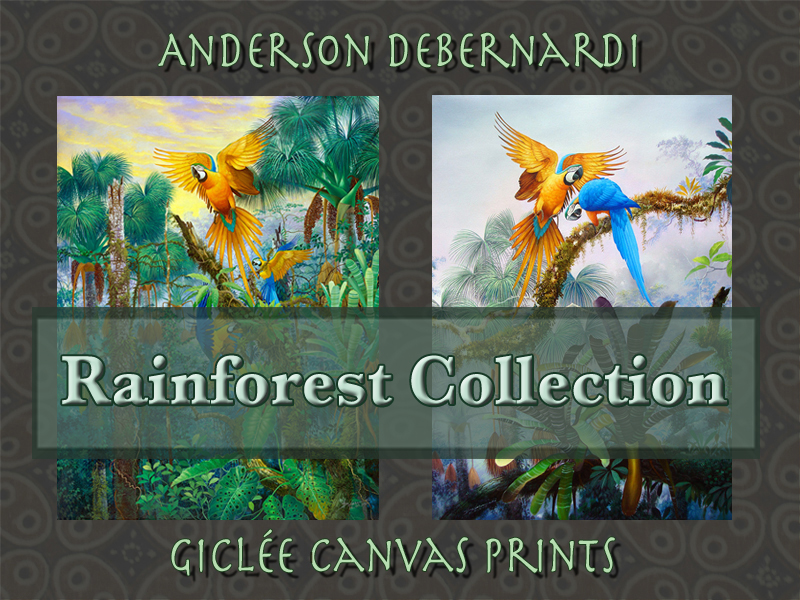 Debernardi Rainforest Collection